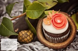 Sweet Cheeks Baking_Hyatt Regency Mission Bay_San Diego Cupcakes