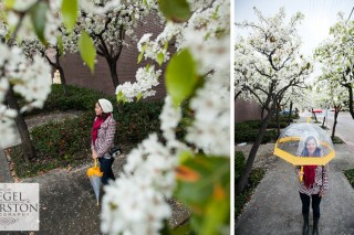 rainy day portraits with blooming ornamental pear trees