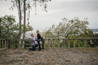 Live Santa Barbara Proposal at Franceschi Park